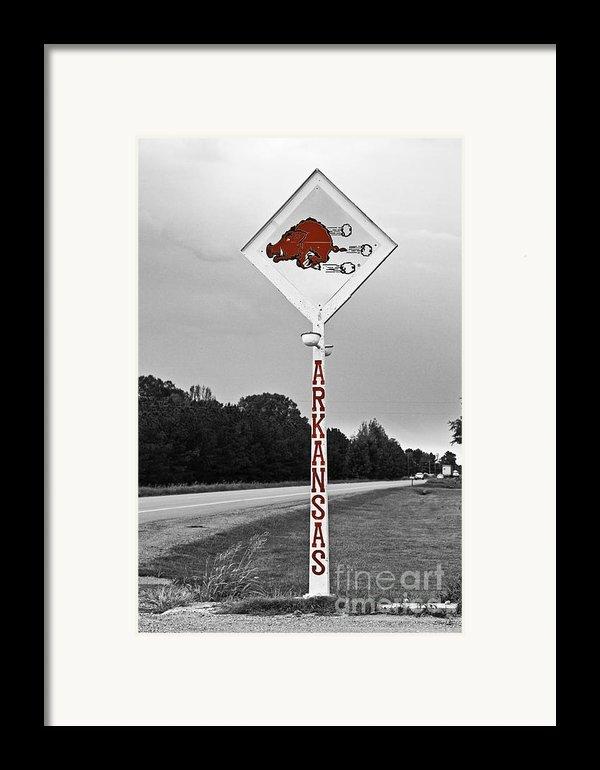 Hog Sign Framed Print By Scott Pellegrin