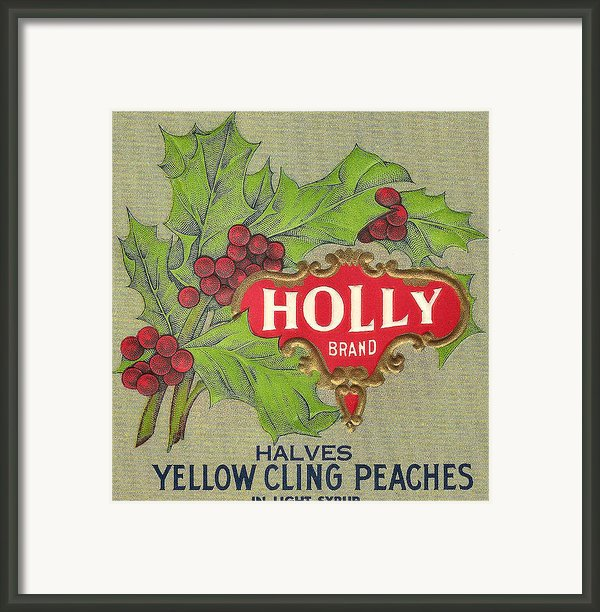 Holly Brand Yellow Cling Peaches Framed Print By Studio Art