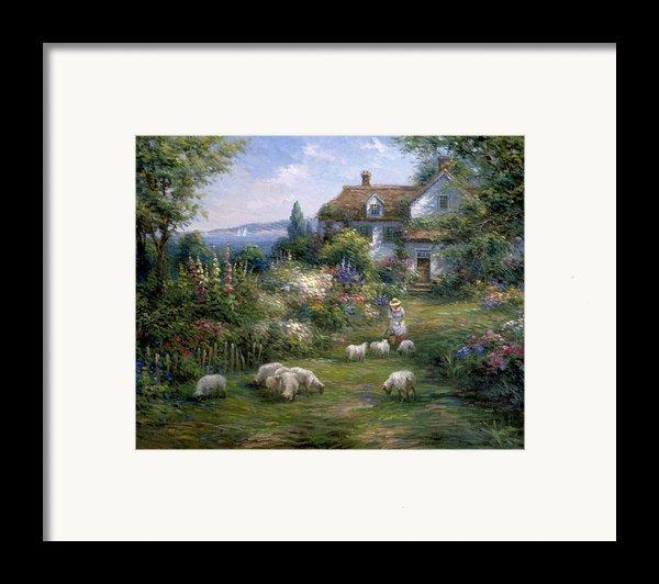 Home Sheep Home Framed Print By Ghambaro