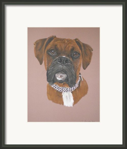 Honey Framed Print By Joanne Simpson