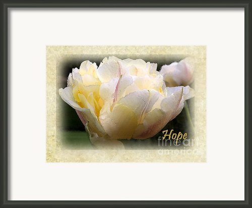 Hope - Greeting Cards By Jean O