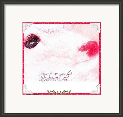 Hope To See You This Christmas Framed Print By Sherry Gombert