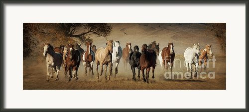 Horses Running Free Framed Print By Heather Swan