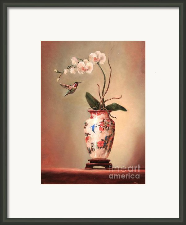Hummingbird And White Orchid Framed Print By Lori  Mcnee