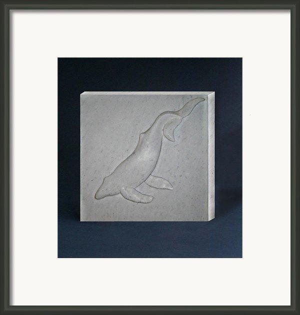 Humpback Whale Framed Print By Leslie Dycke