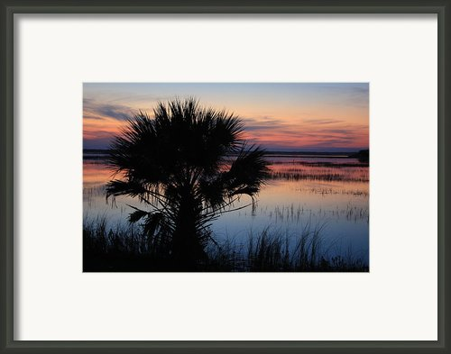 Hunting Isalnd Tidal Marsh Framed Print By Michael Weeks