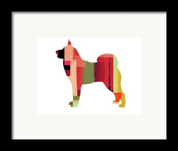 Husky Framed Print By Naxart Studio