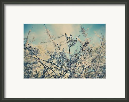 I Hope Spring Will Be Kind Framed Print By Laurie Search