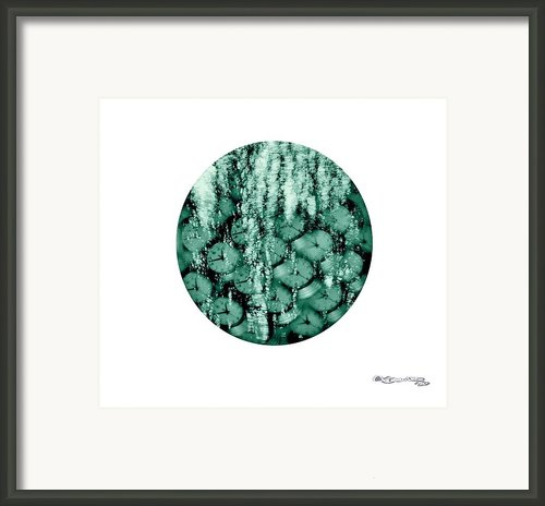 I See Them Run Framed Print By Xoanxo Cespon