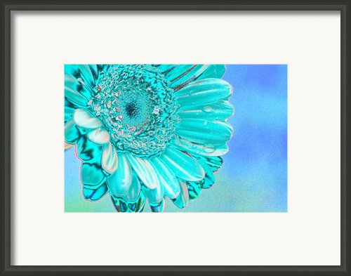 Ice Blue Framed Print By Carol Lynch