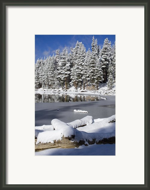 Icy Cold Framed Print By Chris Brannen