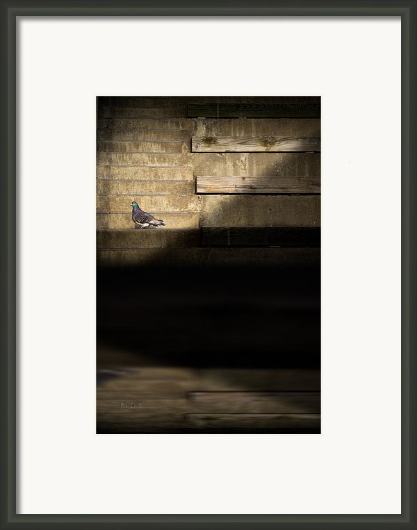 Il Piccolo Guardiano Framed Print By Bob Orsillo