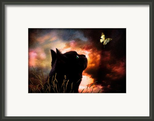 In A Cats Eye All Things Belong To Cats.  Framed Print By Bob Orsillo
