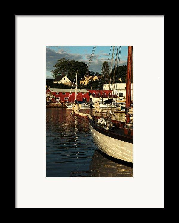 In Harbor Framed Print By Karol  Livote