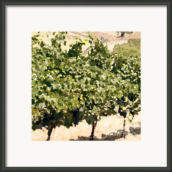 In The Vineyard Framed Print By Artist And Photographer Laura Wrede