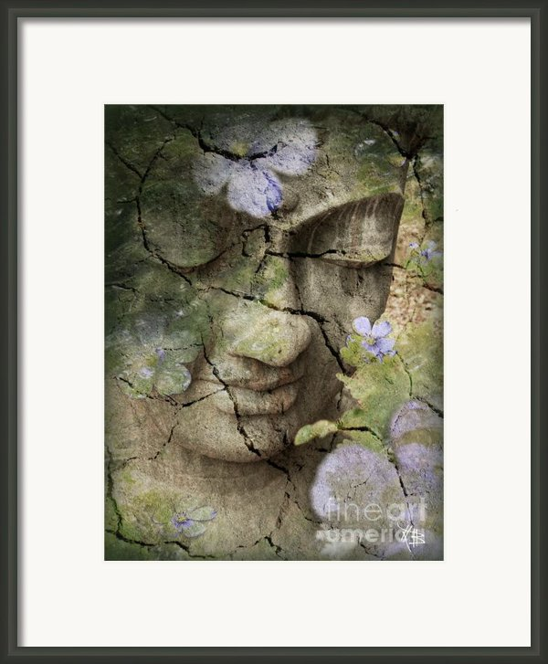 Inner Tranquility Framed Print By Christopher Beikmann