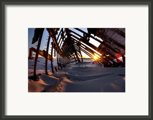Inside A Skeleton Framed Print By Jakub Sisak