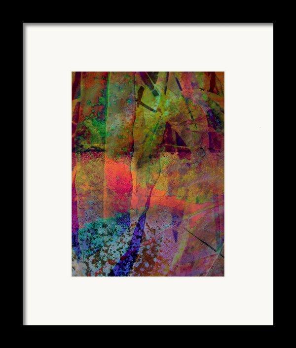 Inside Autumn Framed Print By Shirley Sirois