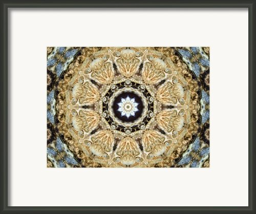 Inside The Dream Framed Print By Tom Druin