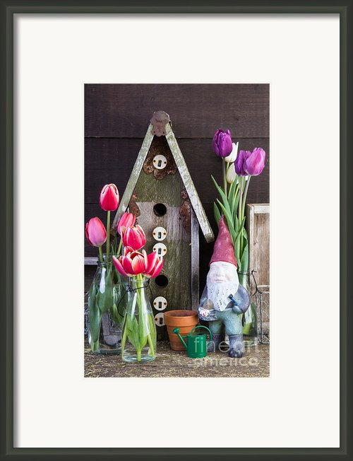Inside The Garden Shed Framed Print By Edward Fielding