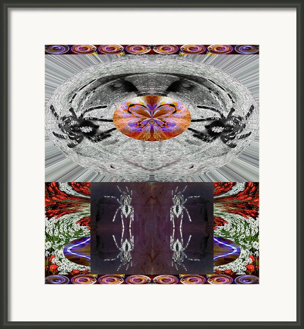 Inspiring Trust Spider - Spirit 2013 Framed Print By James Warren