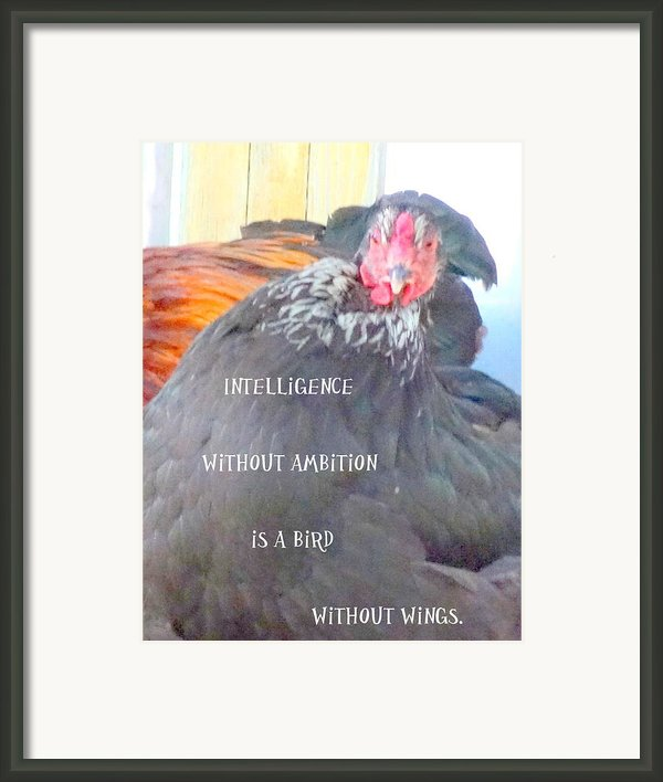 Intelligence Without Framed Print By Hilde Widerberg