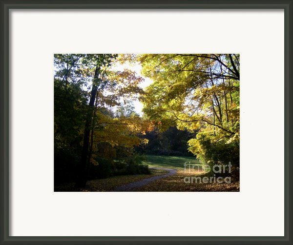 Into His Light Framed Print By Mel Steinhauer