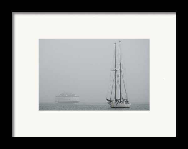 Into The Fog Framed Print By Steve Myrick