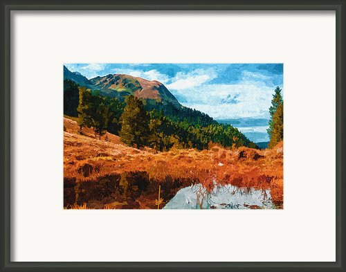 Into The Woods Framed Print By Ayse T Werner
