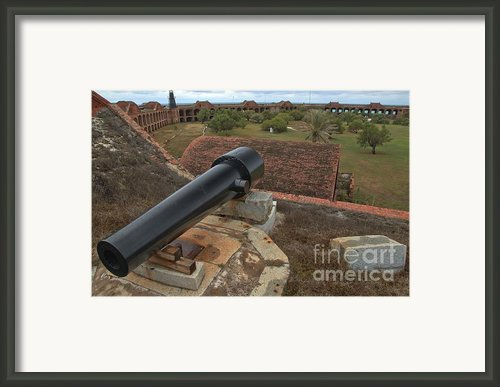 Island Defense Framed Print By Adam Jewell