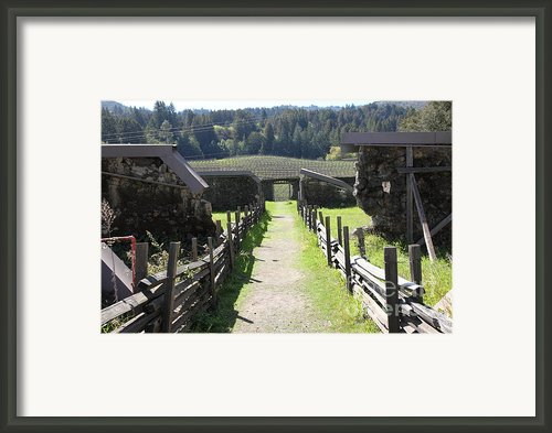 Jack London Ranch Winery Ruins 5d22180 Framed Print By Wingsdomain Art And Photography