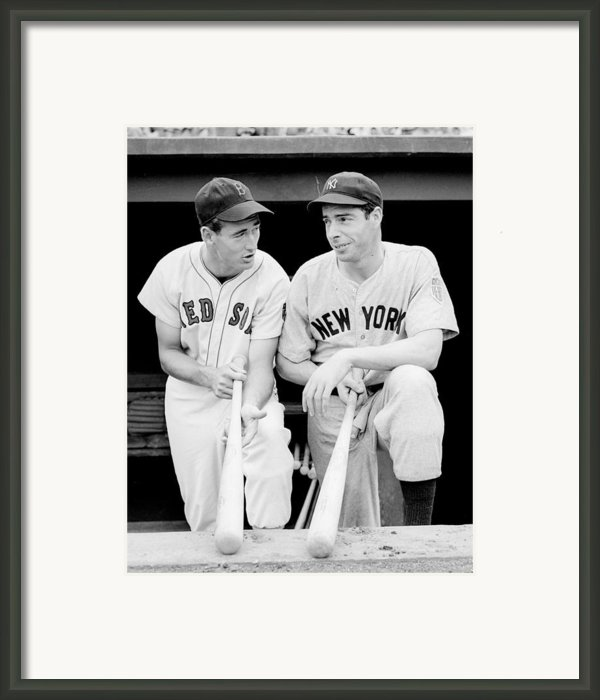 Joe Dimaggio And Ted Williams Framed Print By Sanely Great