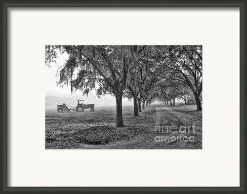 John Deer Tractor And The Avenue Of Oaks Framed Print By Scott Hansen