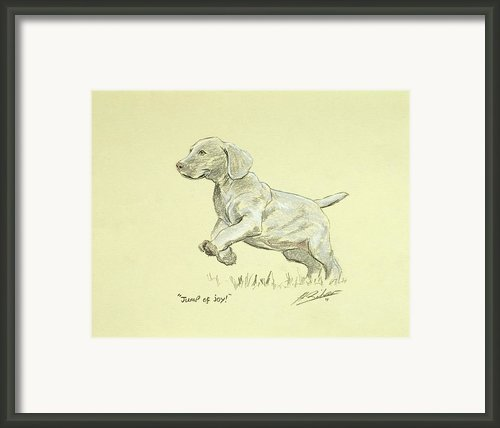 Jump Of Joy Framed Print By John Silver
