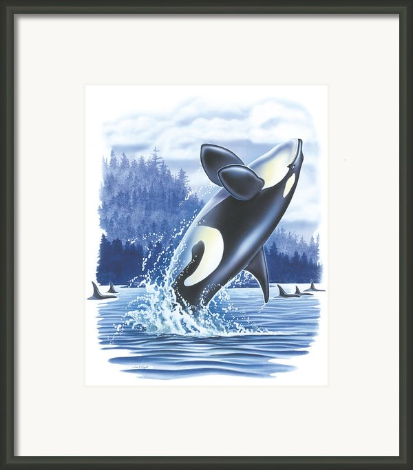 Jumping Orca Framed Print By Jq Licensing