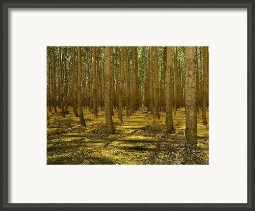 Just Add Water Framed Print By Jean Noren