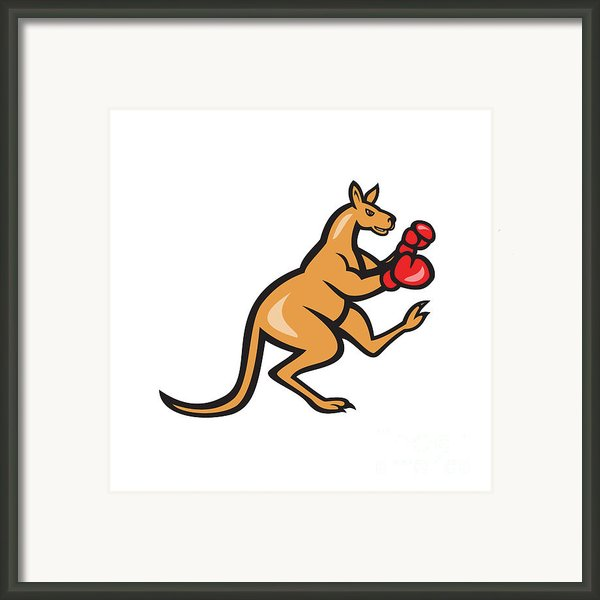 Kangaroo Kick Boxer Boxing Cartoon Framed Print By Aloysius Patrimonio