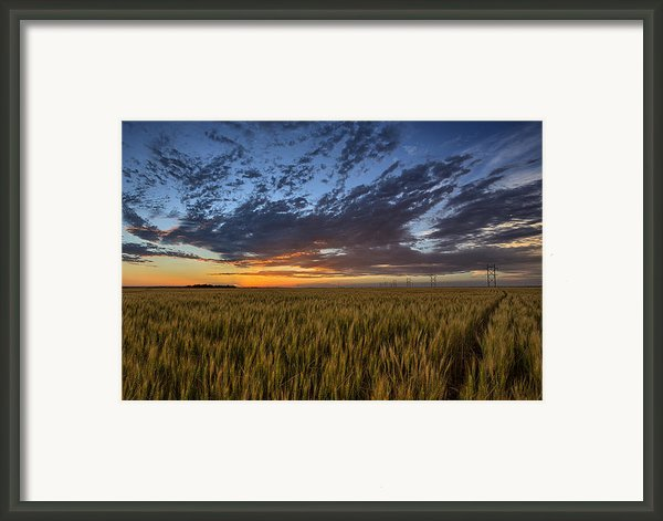 Kansas Color Framed Print By Thomas Zimmerman