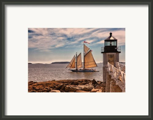 Keeping Vessels Safe Framed Print By Karol  Livote