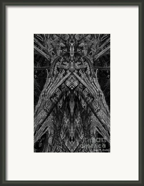 King Of The Wood Framed Print By Dave Gordon