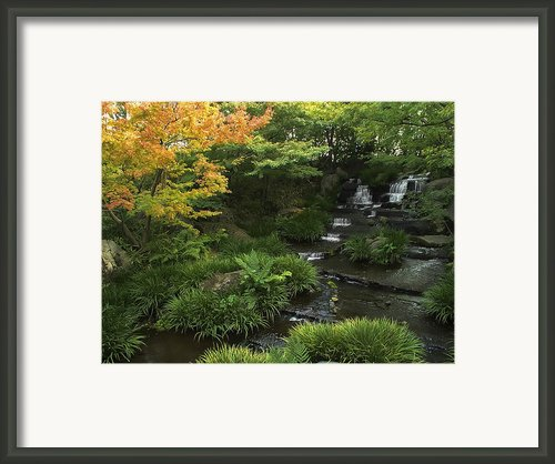 Kokoen Garden Waterfall - Himeji Japan Framed Print By Daniel Hagerman