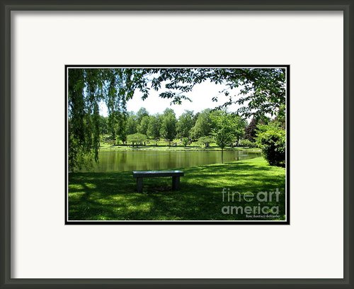 Lake In Forest Lawn Cemetery Buffalo Ny Framed Print By Rose Santuci-sofranko