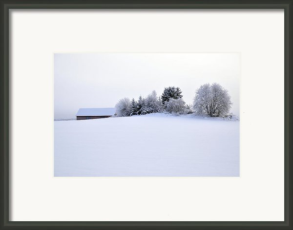 Landscape In Winter Framed Print By Conny Sjostrom