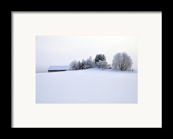 Landscape In Winter Framed Print By Conny Sjostrom