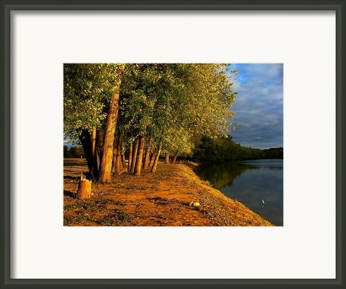 Late Evening On White River Framed Print By Julie Dant