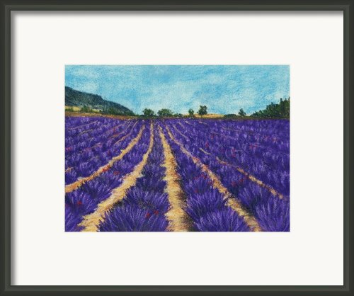 Lavender Afternoon Framed Print By Anastasiya Malakhova