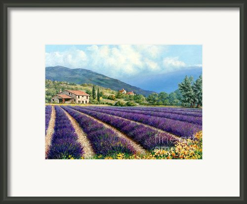 Lavender Framed Print By Michael Swanson