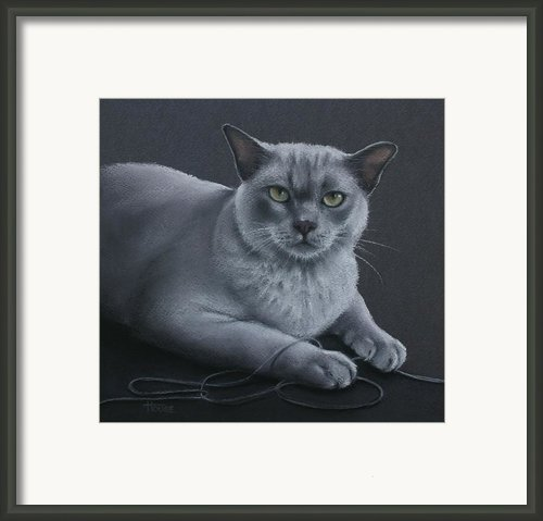 Layla Framed Print By Cynthia House