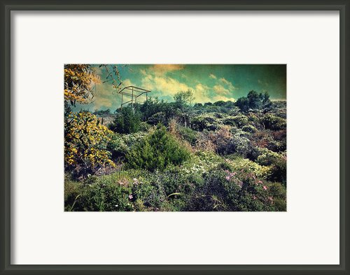 Le Printemps Framed Print By Taylan Soyturk