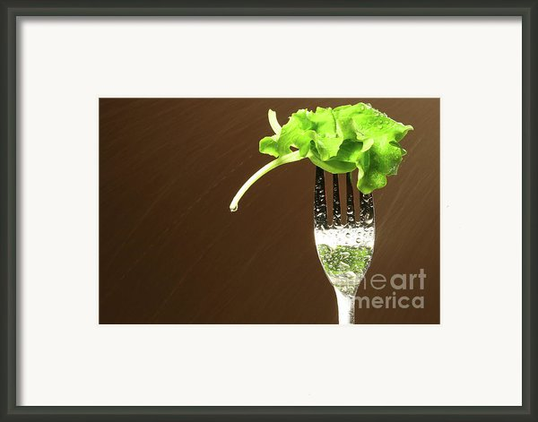 Leaf Of Lettuce On A Fork Framed Print By Sandra Cunningham